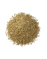 Wholesale Fennel Seed Whole Spices Online